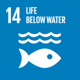 Goal 14: Conserve and sustainably use the oceans, seas and marine resources