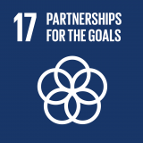 Goal 17: Revitalize the global partnership for sustainable development